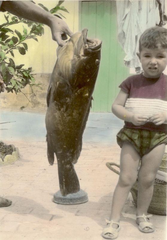 peche_mero_andre_bermudes