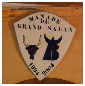 A-La manade du Grand SALAN à PORTIRAGNES Juin 2016