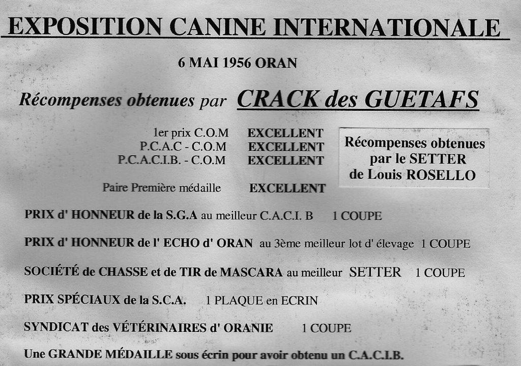 EXPO Canine du 6 Mai 1956L.ROSELLO